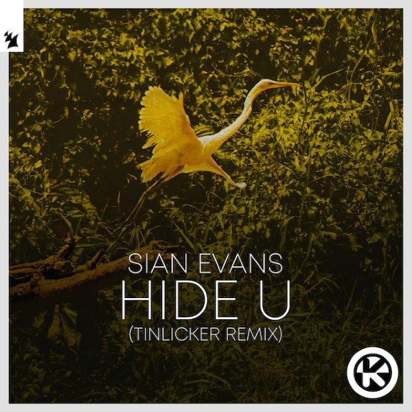 Cover Sian Evans   Hide U Tinlicker Remix